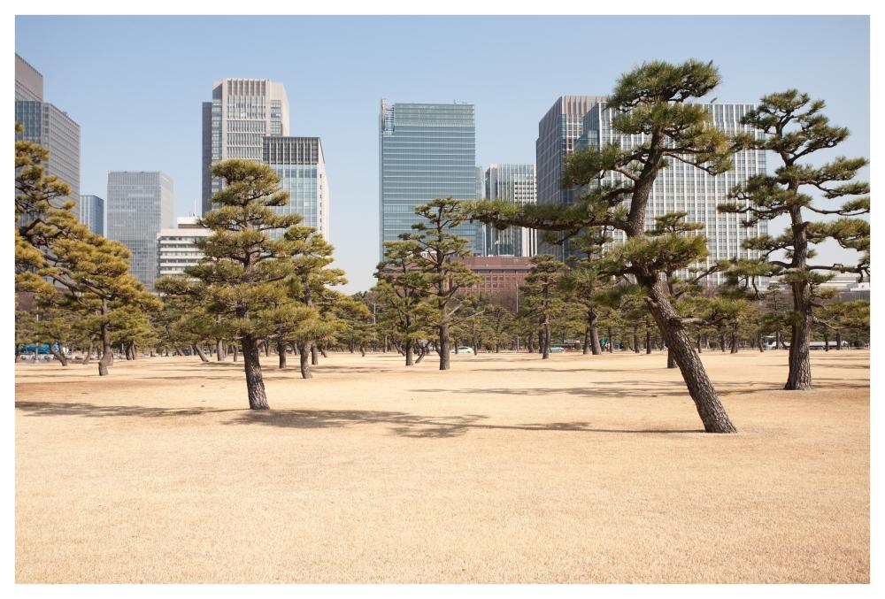 Tokio 03.©Carlos Bravo