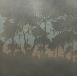 'Brumas de bosque Mediterráneo''.  Fotografía ©Alberto Biesok