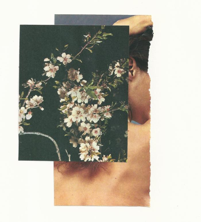 color 11© Annita Klimt