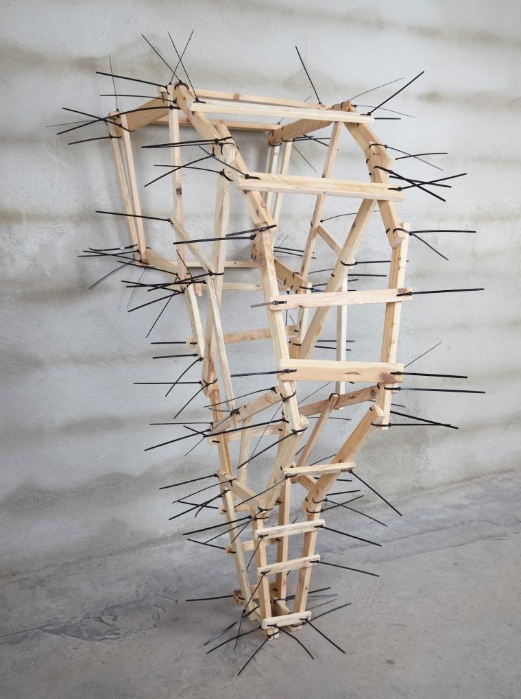 Callergues-estructura-d